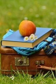 Boek op koffer